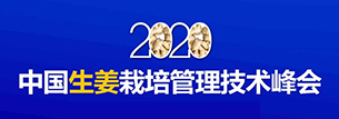 """比奥齐姆赞助 """"2020中国生姜栽培管理技术峰会"""""""